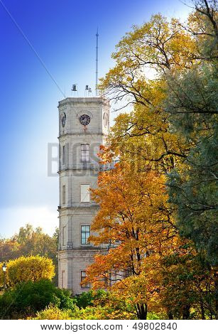 Russia Gatchina bright autumn tree in park near a palace