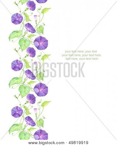 Watercolor vertical seamless pattern border with convolvulus