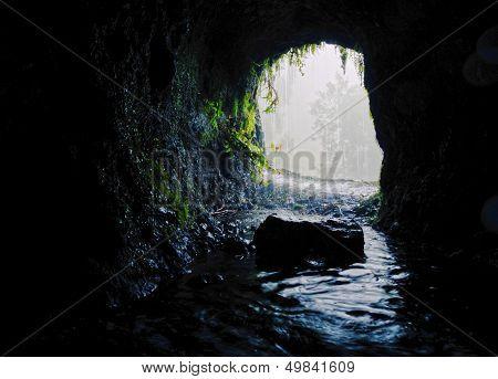 Nacientes Marcos Y Cordero Trail, La Palma
