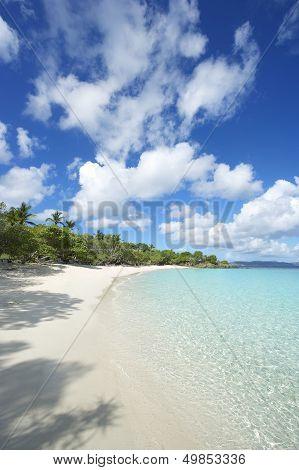 Paradise Idyllic Caribbean Beach Virgin Islands Vertical