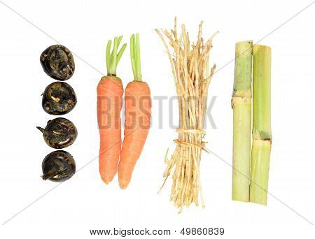 Saccharum Sinense,carrot,water-chestnuts,cogongrass Rhizome