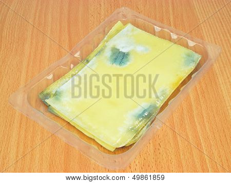 Rotten Slices of Cheese