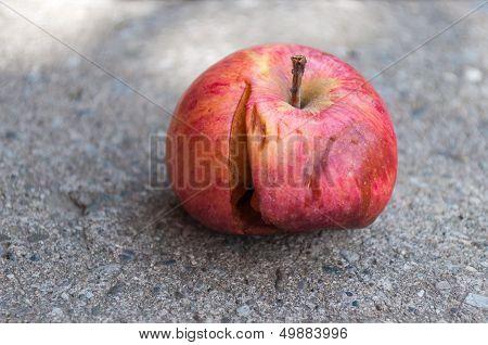 Bad Apple on the Floor