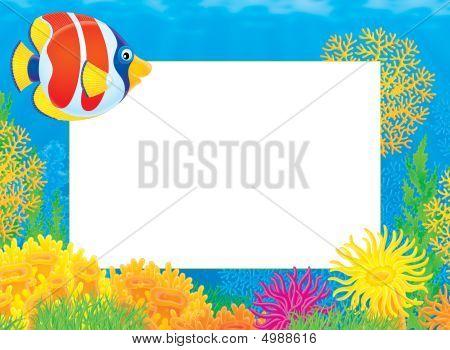 Foto-Rahmen mit Korallenfische