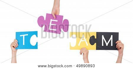 Hands Holding Puzzle With Team