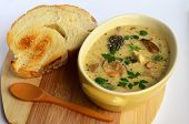 pic of morel mushroom  - Cream soup prepared of chicken meat and lot of sorts of wild mushrooms spiced with fresh green herb spices and served in rustic ceramic bowl with toasted bread - JPG