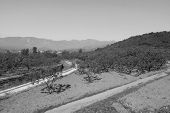 picture of manger  - ZUNHUA - MAY 11: The manger ditch in the Eastern Royal Tombs of the Qing Dynasty on May 11 2013 Zunhua Hebei Province china. ** Note: Slight blurriness, best at smaller sizes - JPG
