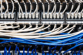 stock photo of cat5  - Blue and white ethernet cables plugged into a switch and patch panel - JPG
