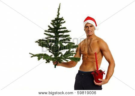 Santa Claus with tree