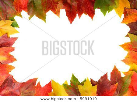 frame of autumn leaves