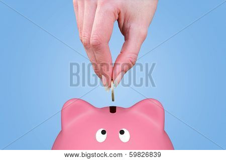 Hand And Piggy Bank
