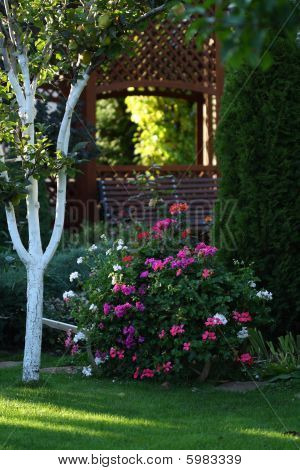 Jardim de outono