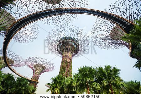 Graden by the Bay in Singapore