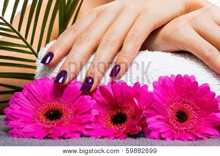 Woman With Beautiful Manicured Purple Nails