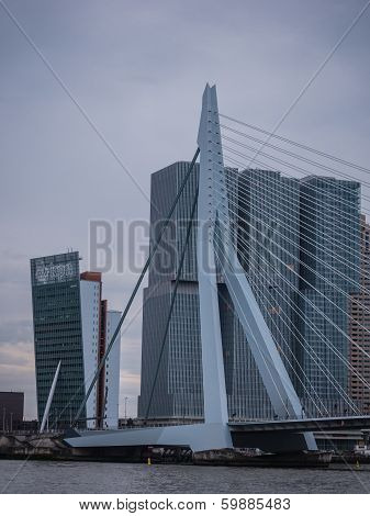Erasmus Bridge Rotterdam, Netherlands Against Dark Sky