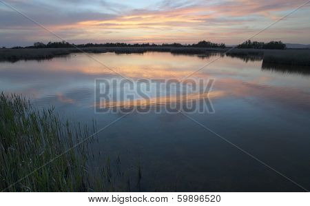 Wetland Landscape Sunset.
