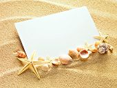 stock photo of shells  - Empty white card with two starfishes and shells is lying on a sea sand summer sunny background - JPG