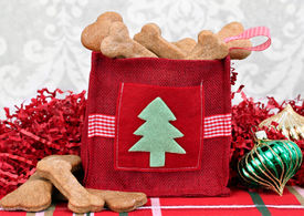 pic of bag-of-dog-food  - Homemade dog cookies in a decorative Christmas bag surrounded by Christmas decor - JPG
