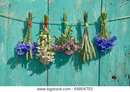 Medical Flowers And Cereal Plants Bunch On Old Wooden Wall