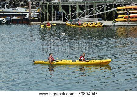 Tourists riding sea kayaks in Bar Harbor
