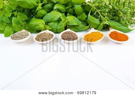 Dried And Fresh Spices