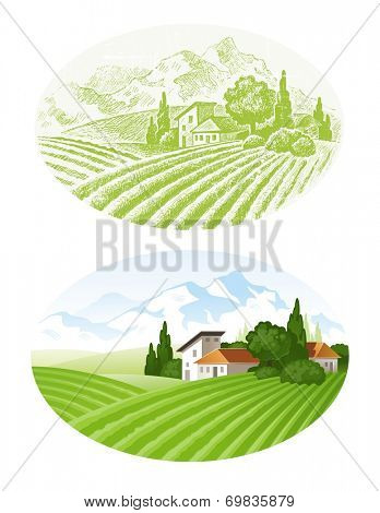 Hand drawn landscape with agrarian fields, village and mountains