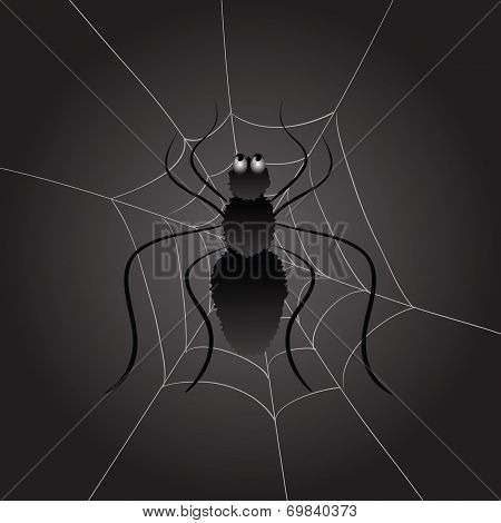Black Spider