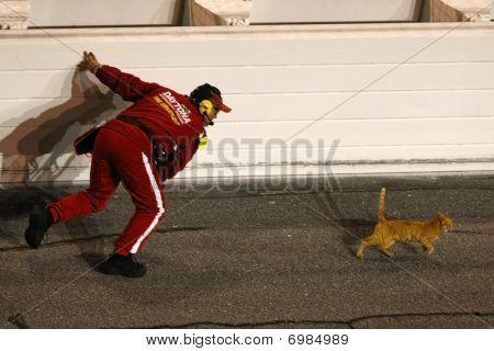 NASCAR Sprint Cup Series Budweiser Shootout