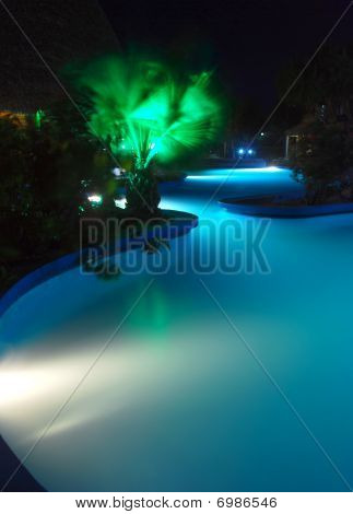Lit pool at night with palm tree