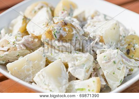 Potato Salad with shallots. Typical BBQ side dish.