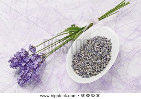Lavender Flowers Fresh And Dry