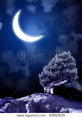 Night fairy-tale. Bright moon and tree