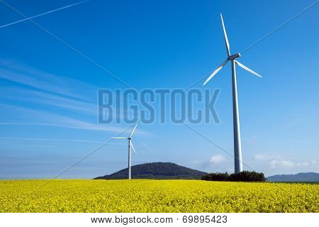 Windwheel and rapeseed in Germany