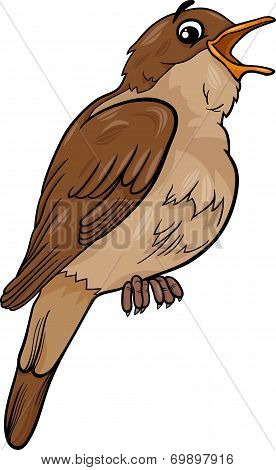 Nightingale Bird Cartoon Illustration