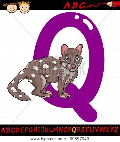 Letter Q For Quoll Cartoon Illustration