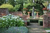 picture of fountains  - spray fountain in the rose garden soft focus - JPG