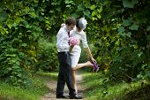 image of bridal veil  - Wedding theme. A bride adjusting her shoe in the arms of a groom. Newlyweds in the botanical garden.