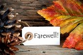 stock photo of say goodbye  - An Autumn Label with the Word Farewell on it Fall Background - JPG