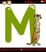picture of meerkats  - Cartoon Illustration of Capital Letter M from Alphabet with Meerkat Animal for Children Education - JPG