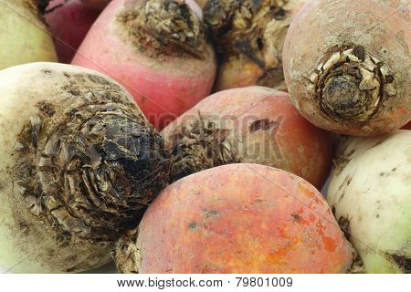 colorful mix of red,yellow and white beets background