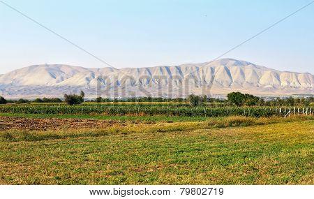 Rural Landscape;