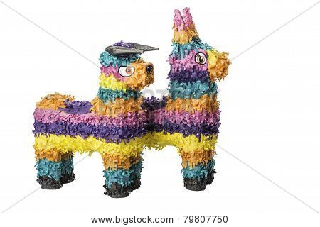 Colorful Pinatas