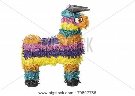 Colorful Pinata