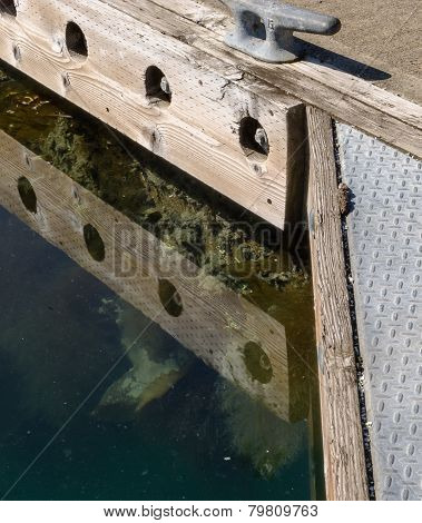 Under The Floating Dock