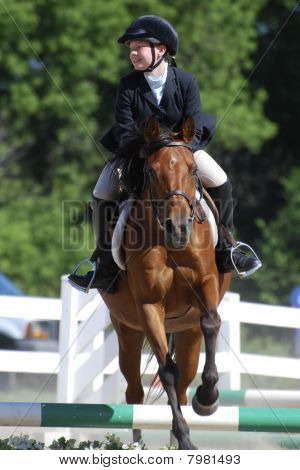 Horse Jumping #2