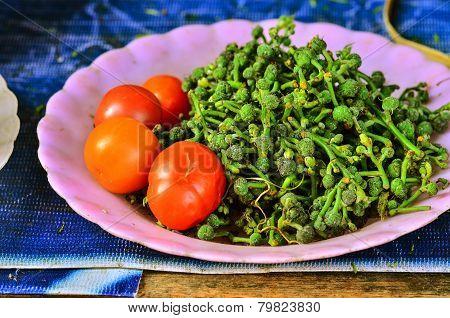 Green Fresh Salae And Tomato
