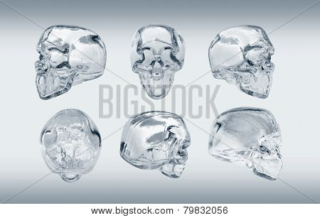 glass skull many angle view