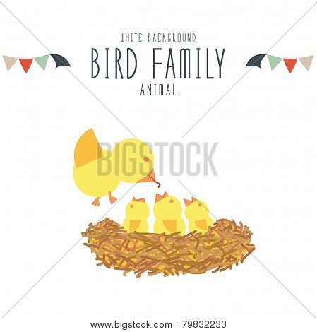 Mother bird find food to feed baby birds in the nest on white background.