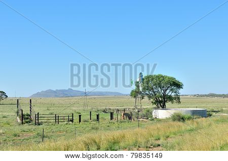 Farm Scene South Of Springfontein