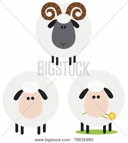 Ram And Sheep Modern Flat Design . Collection Set Isolated on white